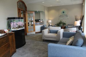 Detroit dentist in Allen Park